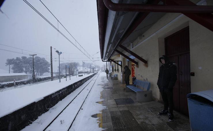 La nieve colapsa Bizkaia