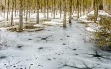 Las playas de Ullíbarri, congeladas por el temporal