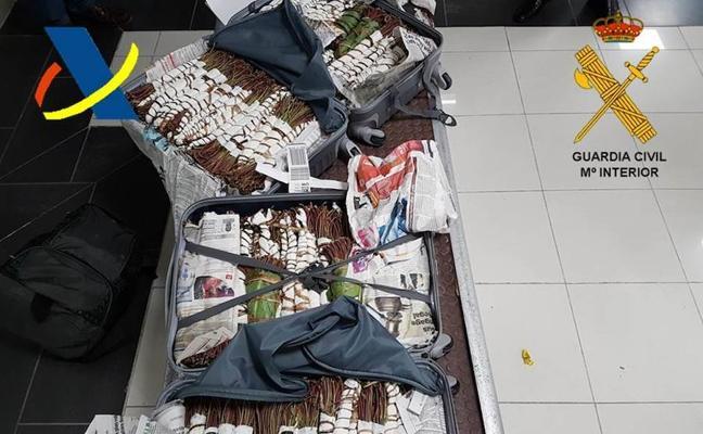Euskadi, tierra de paso para la droga de los piratas somalíes