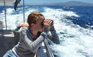 Las salidas en barco para avistar cetáceos atraen a Urdaibai a un millar de visitantes al año