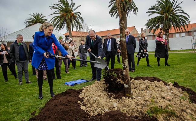 Plantan un retoño del Árbol de Gernika para reconocer la labor del hospital de Bermeo