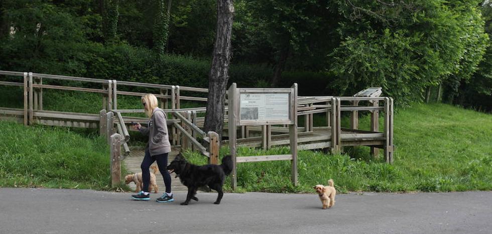 Erandio retira al año 370 kilos de cacas de perro de sus calles y zonas públicas