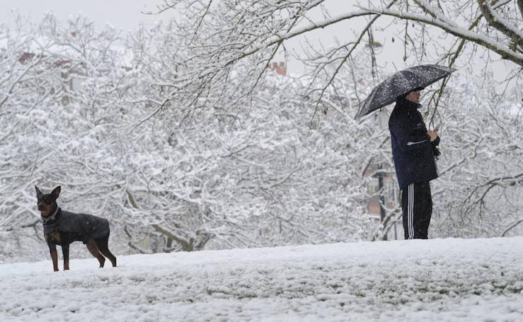 Álava se despide del invierno cubierta con un manto de nieve