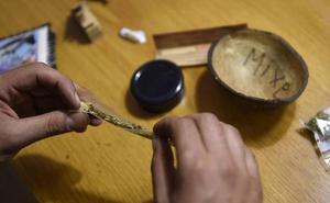 Absuelto un club de cannabis de Durango donde incautaron 1.000 plantas