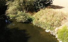 La Agencia Vasca del Agua detecta 20 vertidos incontrolados en lo que va de año, la mitad de todo 2017