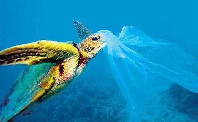 El plástico ahoga los mares