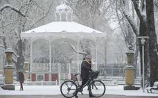 Condenan a un ciclista en Vitoria al estimar que el carril bici no le da prioridad