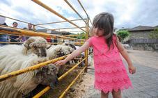 Orozko reivindica con una feria la importancia del pastoreo