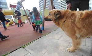Vecinos de Vitoria piden correas y bozales para los perros para mejorar la convivencia