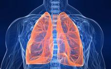 El cobre y el plomo de los suelos de Euskadi favorecen los cánceres de pulmón y esófago