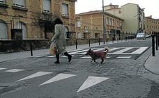 La nueva norma de tenencia de perros, lista para entrar en vigor a corto plazo