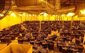 Noches en vela para evitar robos en la nave de Júndiz donde se cultivaba la marihuana