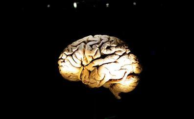 La música activa regiones del cerebro no afectadas por la enfermedad de Alzheimer