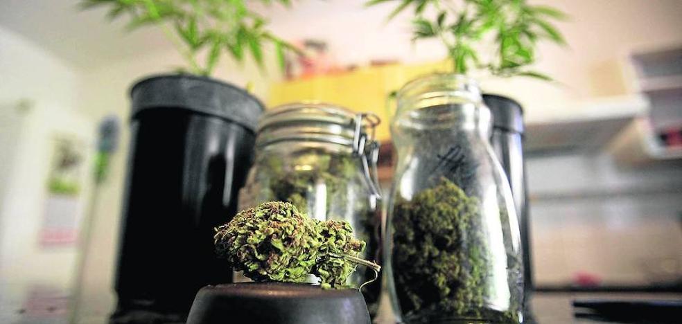100.000 euros de sanción a un club de cannabis de Vitoria
