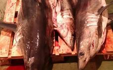 El puerto de Ondarroa centra las inspecciones pesqueras con 94 controles en el último año