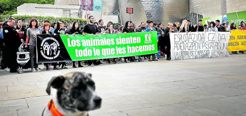 Las protestas animalistas llegan al Guggenheim