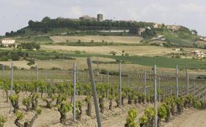 Satisfacción en la Rioja Alavesa al evitar el paso de la Alta velocidad por la comarca