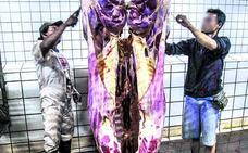 Desmantelan un matadero 'halal' ilegal en Álava y detienen a siete personas