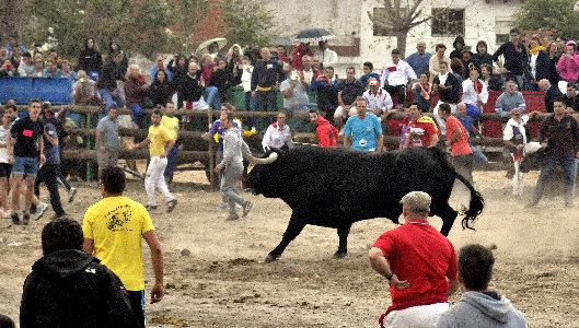 Toro de la Peña (Toro de la Vega)