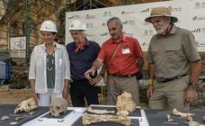 Aparecen restos de neandertales en Atapuerca