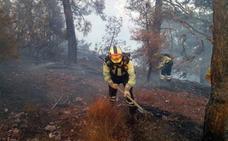 Los bomberos avanzan en perimetrar totalmente el incendio de Yeste