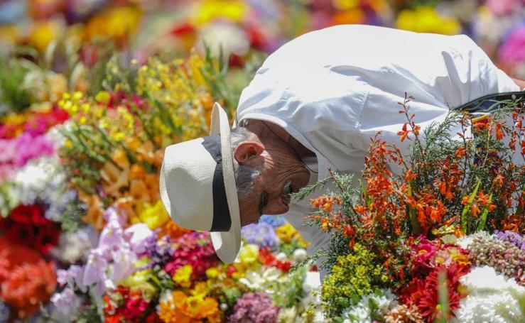Medellín se viste de flores