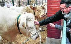 Leioa cita a más de 70 productores en su XXX feria agrícola y ganadera