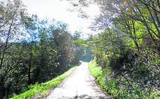 La mejora de Errota Bidea cerrará un anillo verde de 4 kilómetros en Sondika