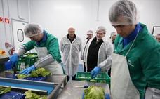 Lantegi Batuak crea ocho empleos para discapacitados con un proyecto de envasado de verduras