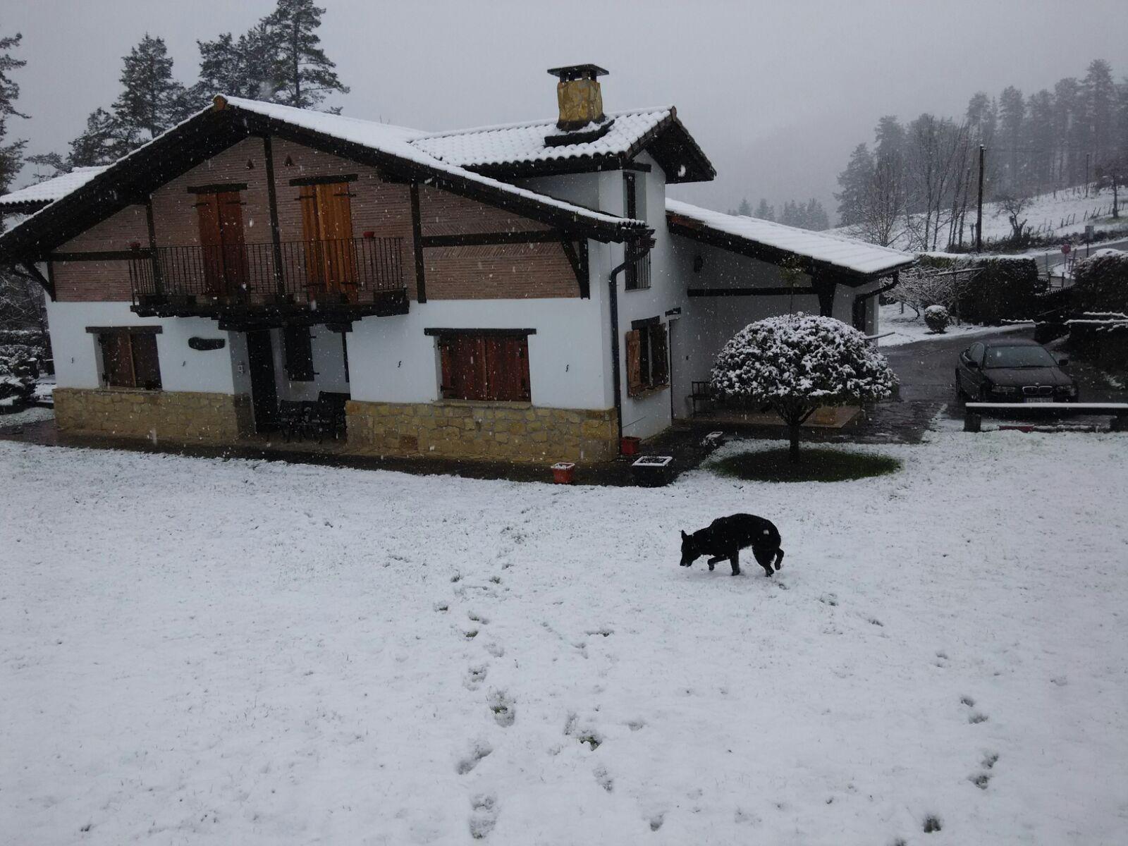 Tus fotos del temporal de nieve enviadas por Whatsapp