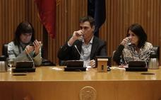 Sánchez promete una iniciativa para reconocer la eutanasia