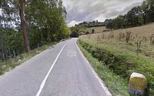Fallece un bilbaíno de 25 años al salirse de la calzada su coche en Zeberio