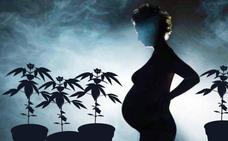 Una menor, detenida por cultivar cannabis cuando estaba a punto de parir en Granada