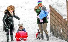 «La precipitación ha sido escasa, de nieve con mucho volumen y poco peso»