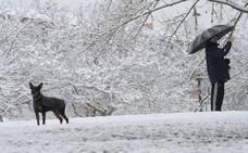 El invierno se resiste a irse: esta noche volverá a nevar en el interior de Álava