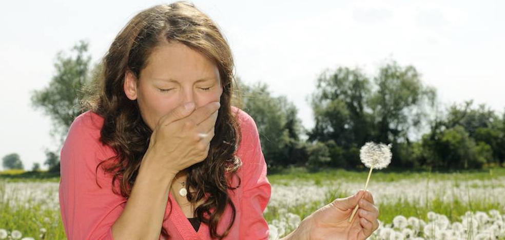 Guía para sobrellevar una primavera «con mucho polen» en Bizkaia