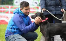 Un registro de perros villanos protegerá a la raza encartada