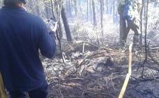 Los bomberos logran extinguir en cuatro horas un incendio forestal en Amorebieta