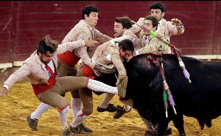 Coger al toro por los cuernos