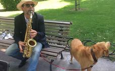 El perro que canta jazz