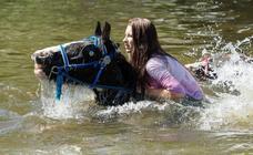 La feria del caballo de Appleby