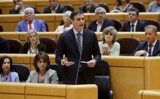 Pedro Sánchez pide al PP que se limite a hacer oposición al Gobierno, pero no al Estado
