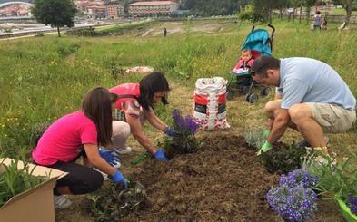 Plentzia crea el primer oasis para mariposas de Uribe Kosta