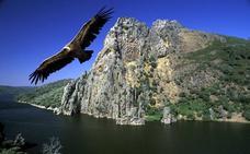 Picos de Europa y Ordesa, los primeros parques nacionales, cumplen cien años