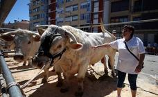 «La gente no quiere pagar la calidad de la carne, prefiere traerla de fuera»