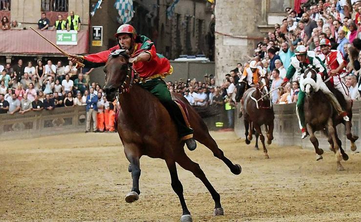 La luz y los caballos de Siena