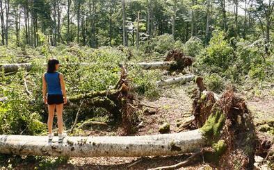 Cómo se formó el devastador tornado que arrasó un hayedo en la sierra de Entzia