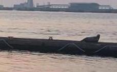 Una foca se 'aloja' en un pantalán del Club Marítimo de Getxo