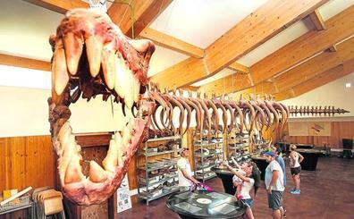 El hogar de los dinosaurios