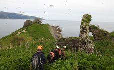El Urdaibai Bird Center y Aranzadi estudiarán la migración de aves en la isla de Ízaro